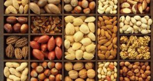 wholesale nuts and dried fruits